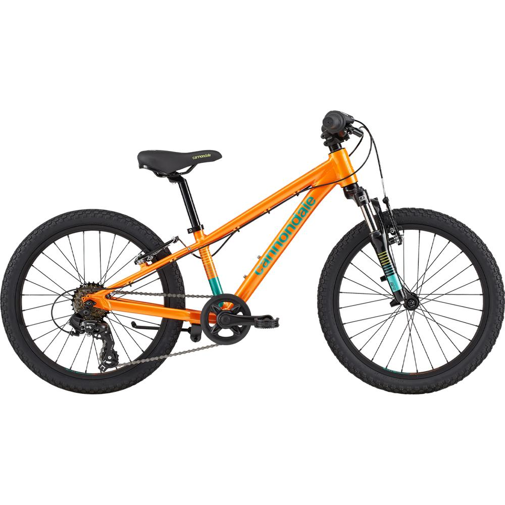Cannondale Mountain Bike Cycling Bicycle Kids Trail 20