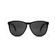 Electric Encelia Gloss Black/Grey Sunglasses
